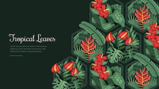 六角形のフレームの背景の熱帯の葉