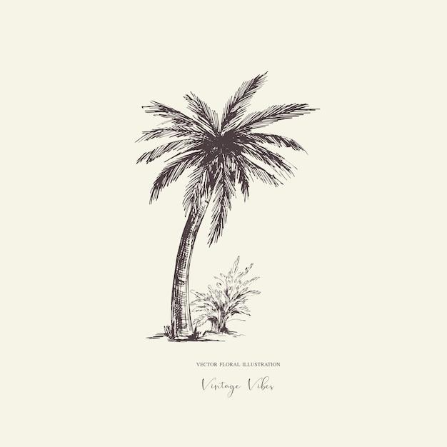 Винтажная монохромная пальмовая открытка