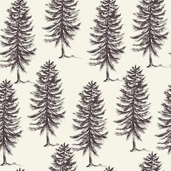 常緑樹の自然林のシームレスパターン