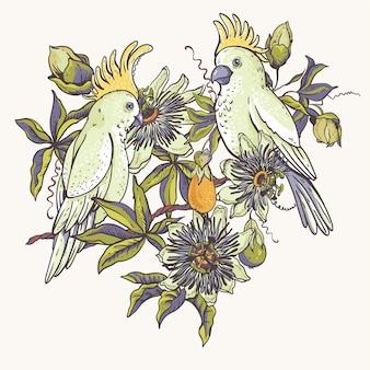 ヴィンテージの白いオウム、花の自然なコレクション。