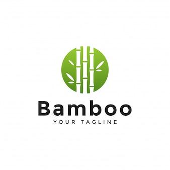Круг зеленый бамбук шаблон логотипа дизайн