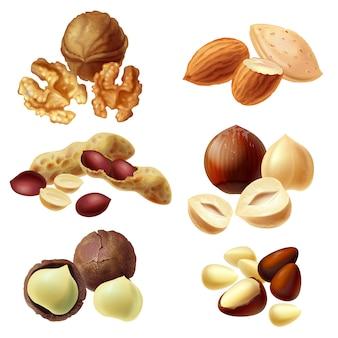 様々なナッツ、ヘーゼルナッツ、マカダミア、ピーナッツ、アーモンド、クルミ、パインナッツのセット