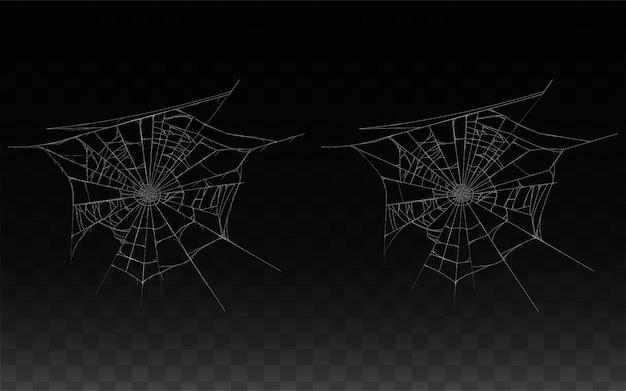 現実的なクモの巣、暗い背景に隔離されたスパイダーウェブのコレクション。