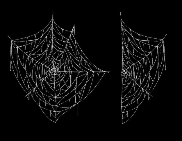 スパイダーウェブ、全体と部分、黒い背景に隔離された白いおかしなクモの巣のイラスト。