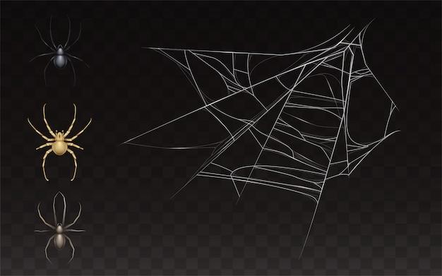現実的なクモの巣とクモのコレクション。暗い背景に分離された昆虫の網。