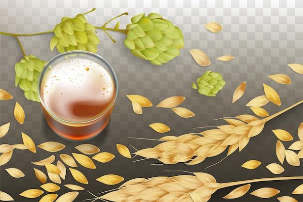 Свежее пиво в стеклянном стакане, колосья ячменя или пшеницы и разбросанные зерна, цветение хмеля