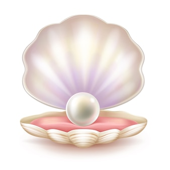 開けられた貝の貴重な真珠