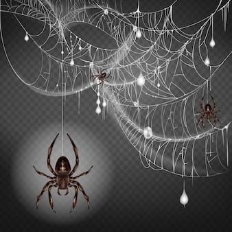 細いウェブストリングにぶら下がっている危険で有毒な大小のクモ