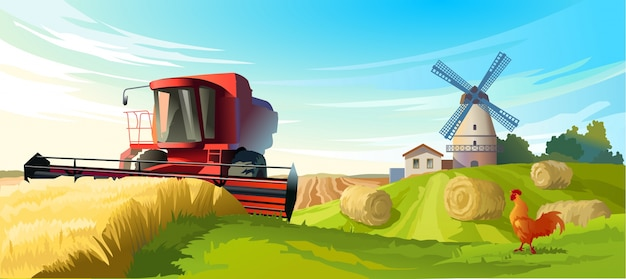 ベクトル図農村の夏の風景