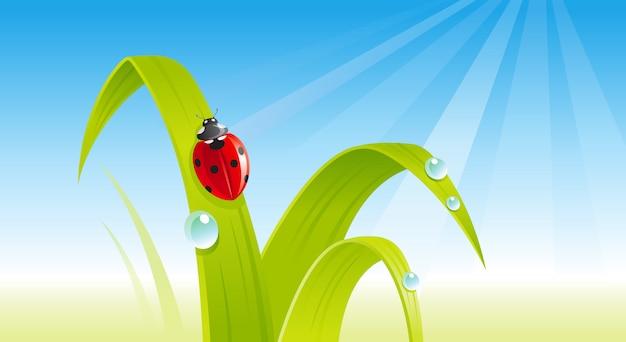 Зеленая свежая трава с божьей коровкой. мультфильм весна иллюстрация.