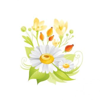 Весенняя ромашка, крокус мед цветы цветочные значок. реалистичный мультфильм милый завод цвести.