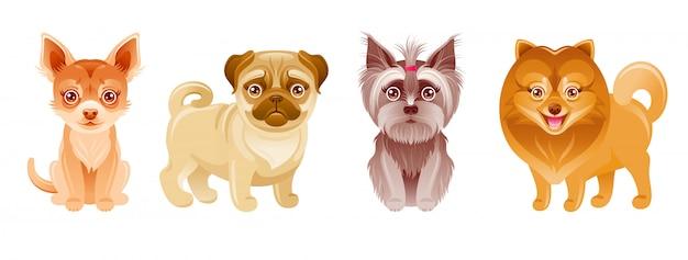 Собаки установлены. щенок. мультяшные питомцы. милый значок с счастливым мопс, чихуахуа, йоркский терьер, шпиц. небольшая коллекция пород. смешные животные иллюстрации. коллекция милых собак
