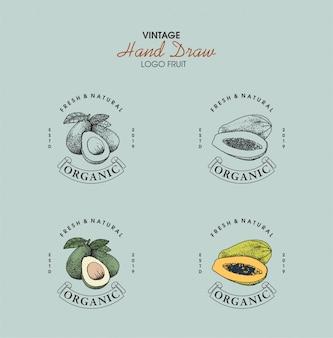 Урожай логотип фрукты рисованной стиль
