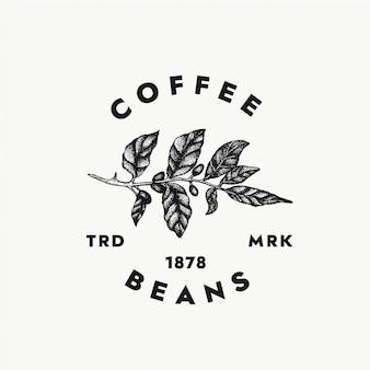 あなたの創造的なプロジェクトとカフェブランドのコーヒー豆のロゴのテンプレート。