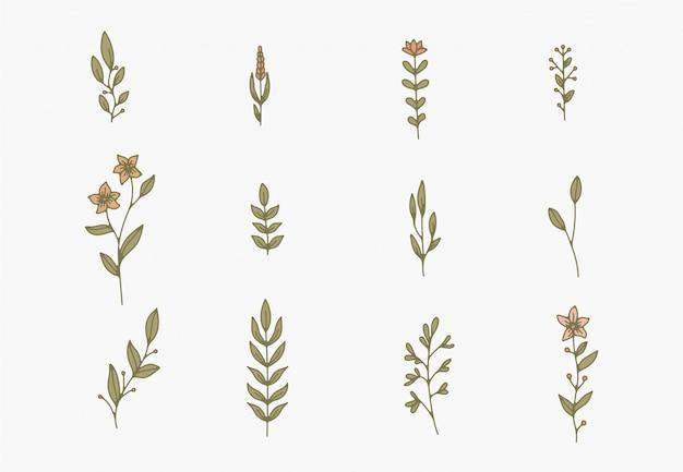 Крошечные простые ботанические иллюстрации, штриховые рисунки, минимальные элементы дизайна. элегантные и нежные растительные каракули