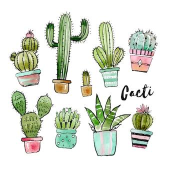 Прекрасная коллекция кактусов в акварели