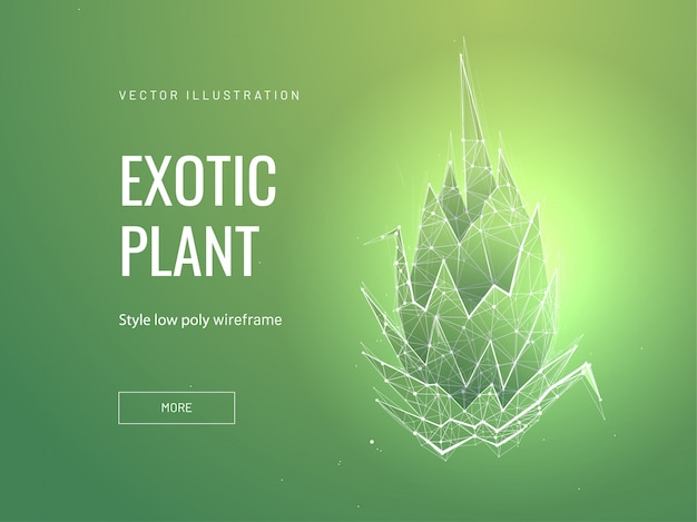 Экзотическое растение низкополигональная каркасный шаблон