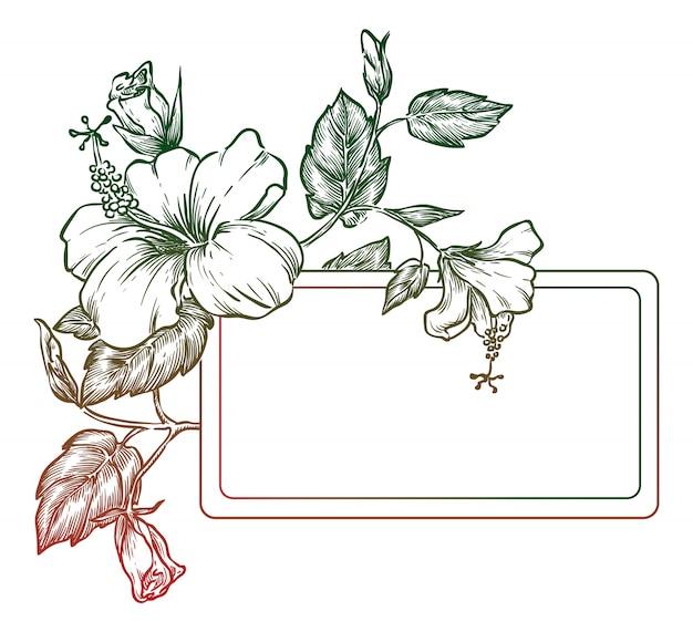 ハイビスカスとエレガントな花の背景