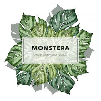 Монстера дизайн рисованной баннер кадр шаблона