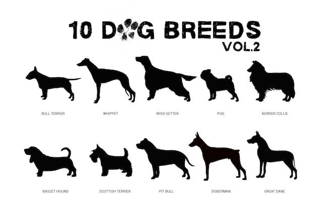 Собачьи породы