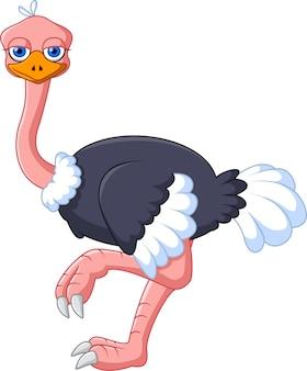 Милый улыбающийся страус