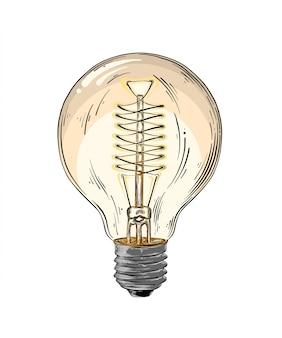 Ручной обращается очерк лампочки в цвете изолированы. подробный винтажный стиль рисования. векторная иллюстрация