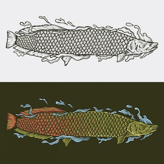 Рука рисунок старинных арапайма векторная иллюстрация