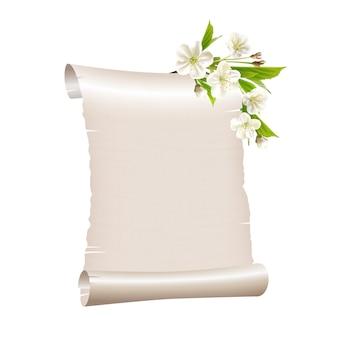 Свиток бумаги с цветущей вишневой веткой