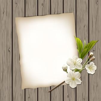 桜の開花枝と白紙