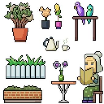 ピクセルアートのおばあちゃんは花、植物、オウムとリラックスします。