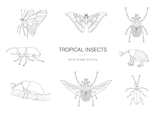 Векторный набор тропических насекомых.