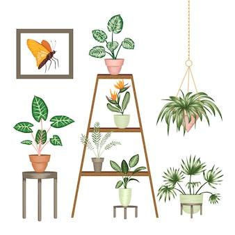 Иллюстрация тропических комнатных растений в горшках на подставке изолированы. яркая реалистичная монстера, алокасия, диффенбахия, кордилайн.