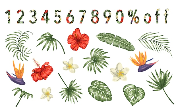 熱帯の花と白い背景で隔離の葉のセットです。エキゾチックなデザイン要素の明るく現実的なコレクション。熱帯のパターンで満たされた数字。
