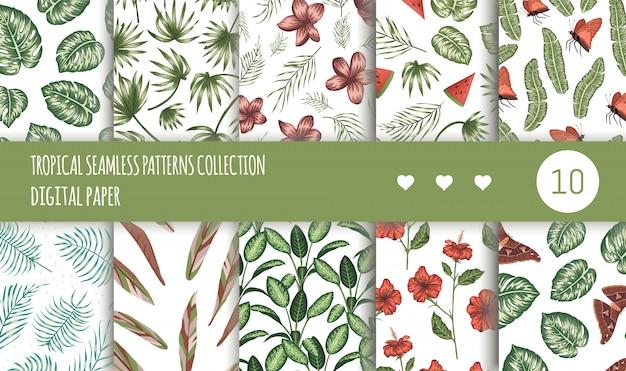 熱帯のシームレスパターンのコレクション。夏または春の熱帯の背景セットを繰り返します。トレンディなエキゾチックなジャングルの装飾品。