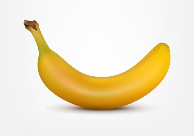 現実的なスタイルのベクトル図のバナナ