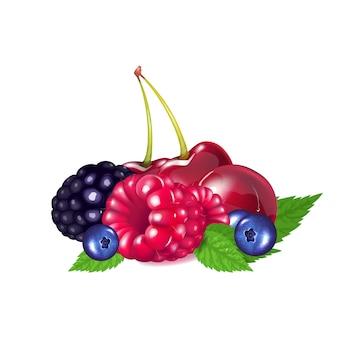 Спелые ягоды реалистичные векторная иллюстрация