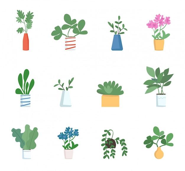 Комнатные растения цветные объекты установлены. декоративные домашние растения изолированных мультфильм иллюстрации на белом фоне. различные горшечные растения в вазах, красивые комнатные украшения