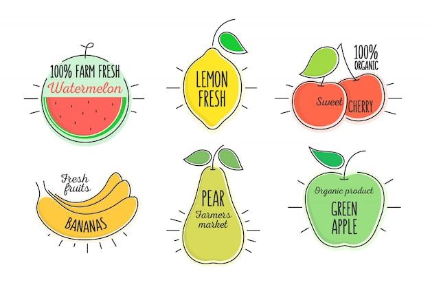フラットスタイルの最小限のトレンディな柑橘類とフルーツの泡