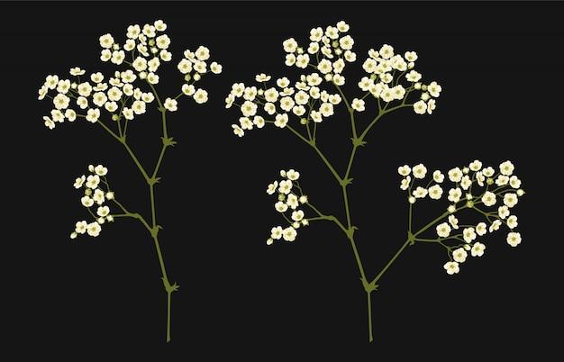 Полностью редактируемые векторные иллюстрации из цветочных клипарта.