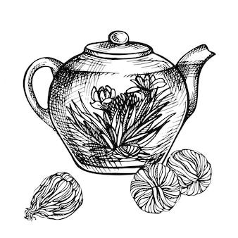 手描きのティーポットをスケッチします。ガラスのティーポットの花と咲く緑茶。エキゾチックなブルーミングティー