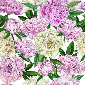 ピンクの牡丹、シームレスパターン、フルカラースケッチ