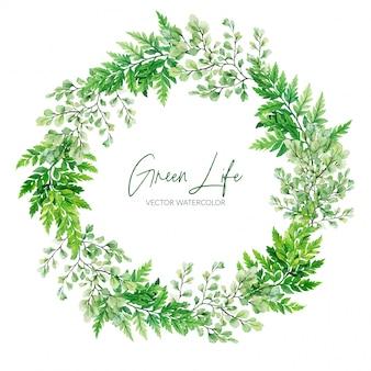 緑の水彩シダ花輪、手描きイラスト