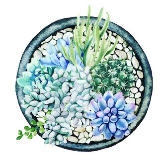 鍋、上面図、軽い小石で明るい水彩多肉植物