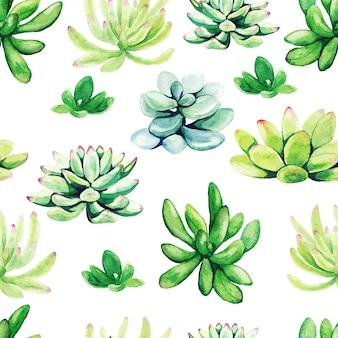 明るい緑の水彩多肉植物、シームレスなパターン