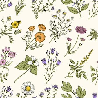 野生の花とハーブ。シームレスな花柄