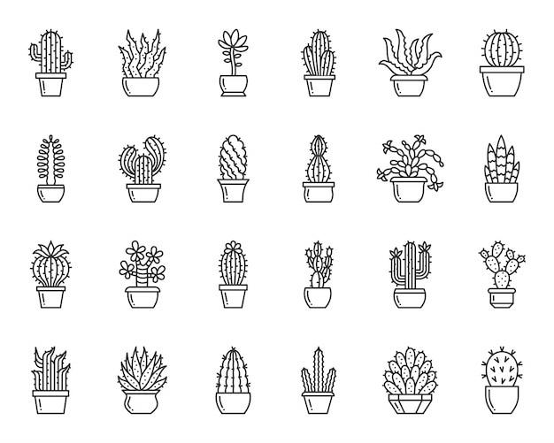 サボテンと多肉植物のラインアイコンセット、家の庭、植木鉢のシンプルな記号で砂漠の植物。