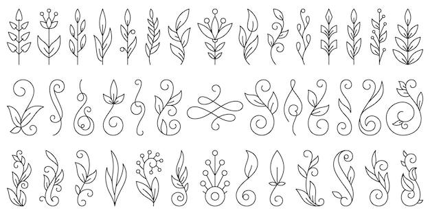 花の枝飾り手描き花落書きラインセット、植物ブラシコレクション。