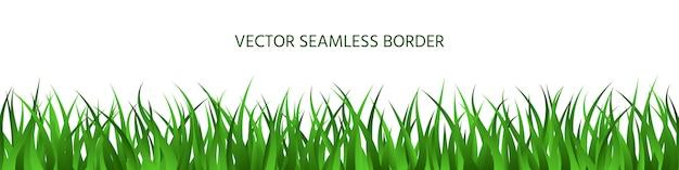 緑の草のシームレスな境界線、春の芝生ハーブパノラマ背景、夏の水平方向のバナー。