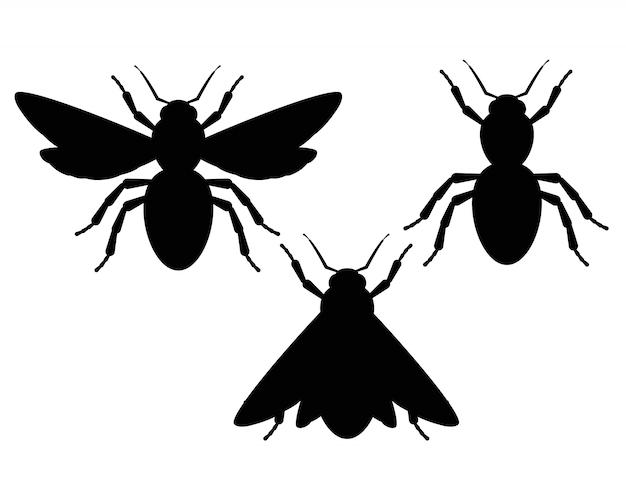 昆虫の黒と白のシルエット。