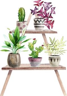 Композиция с раскрашенными вручную акварельными комнатными растениями